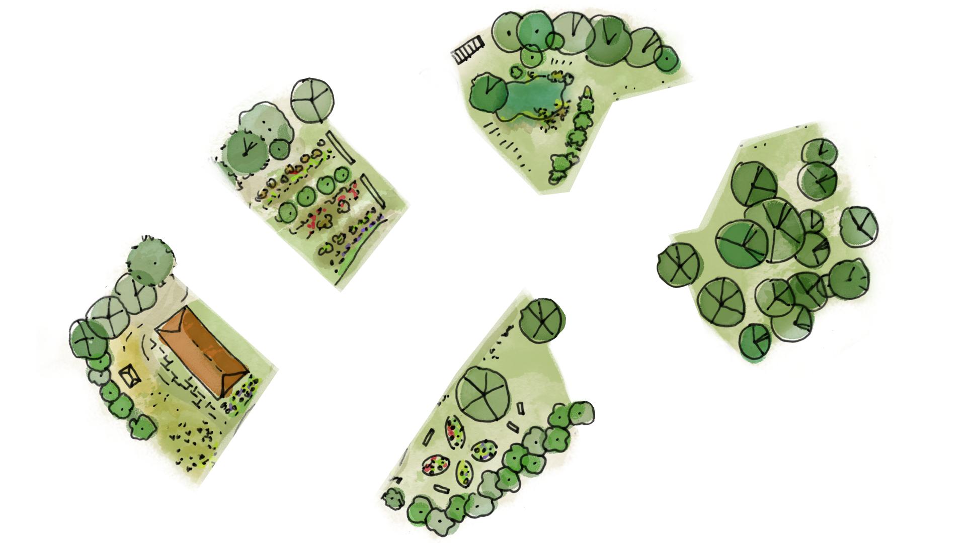 Webinaire Design + | Edition spéciale Accréditation en Permaculture