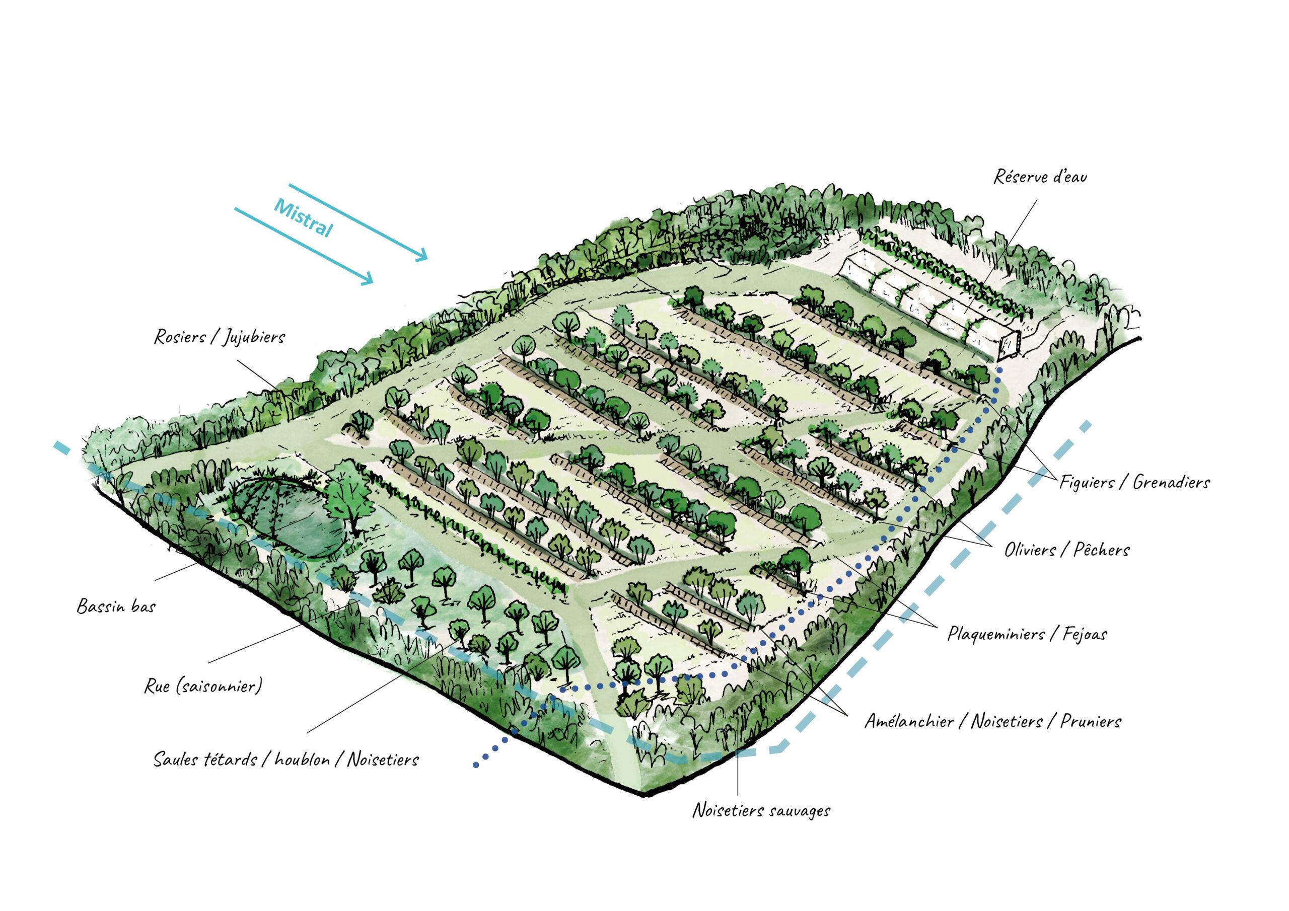 Webinaire – Soirée de soutien au lancement du Jardin des Vignes