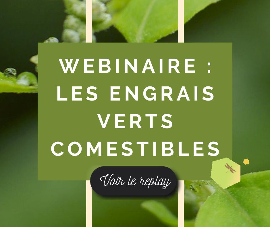 Webinaire – Les engrais verts comestibles
