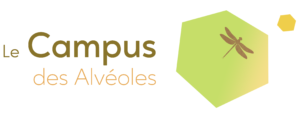 cropped-Logo-écrit-Campus.2.png